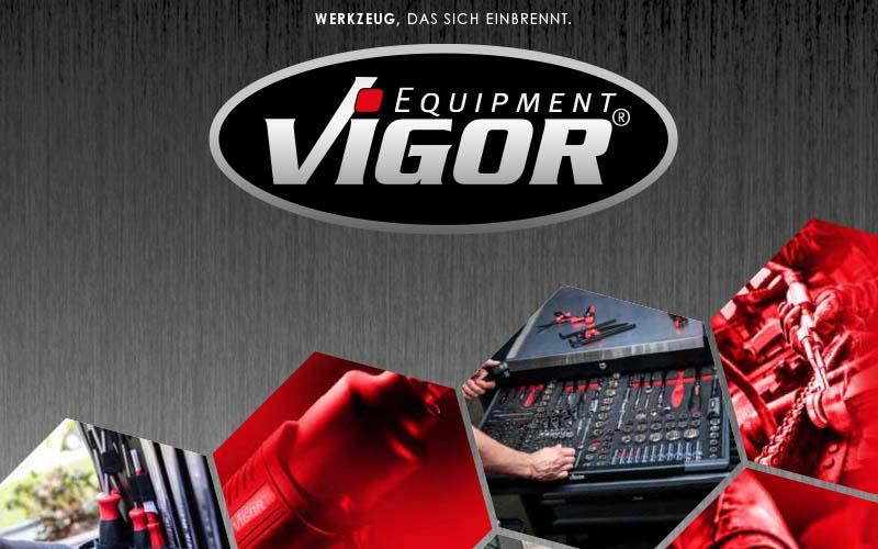 VIGOR Hot Deals 2021_2